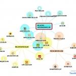 TouchGraph SEO – Netzwerke und Keywords erkennen und verknüpfen